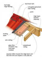 Figure 4: Skillion roof with rafters housed into ridge beam.